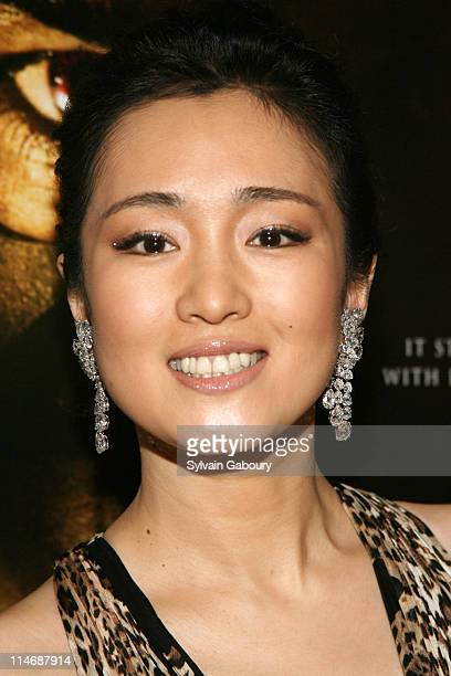 Gong Li during MetroGoldwynMayer Pictures' and The Weinstein Company's Premiere of 'Hannibal Rising' Inside Arrivals at AMC Loews Lincoln Square...