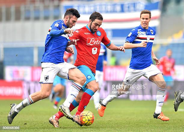 Gonzalo Higuain of Napoli is challenged by Vasco Regini of UC Sampdoria during the Serie A match between UC Sampdoria and SSC Napoli at Stadio Luigi...