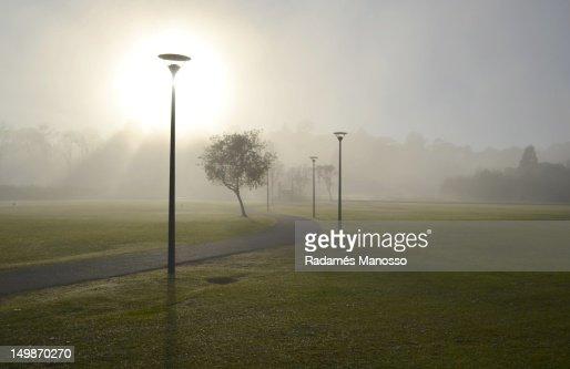 Good morning misty morning : Foto de stock