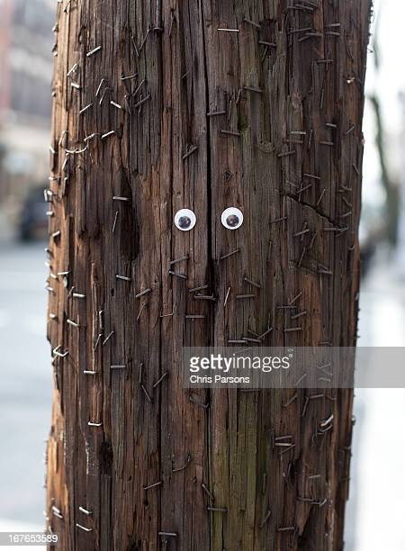 Googly eyes on telephone pole with lots of staples
