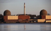 A goose swims along the Hudson River in front of the Indian Point nuclear power plant March 18 2011 in Buchanan New York The US Nuclear Regulatory...