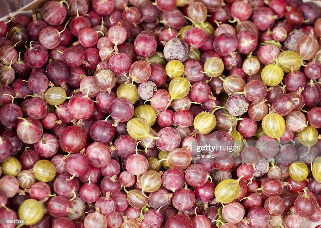 Fundo de Gooseberry : Foto de stock