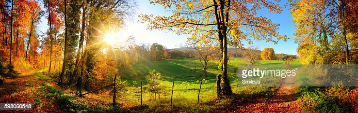 Gorgeous landscape panorama in autumn : Stock Photo