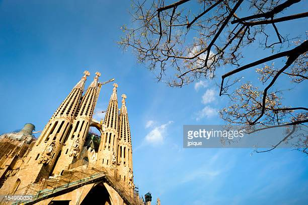 A gorgeous view of The Sagrada Familia, Barcelona