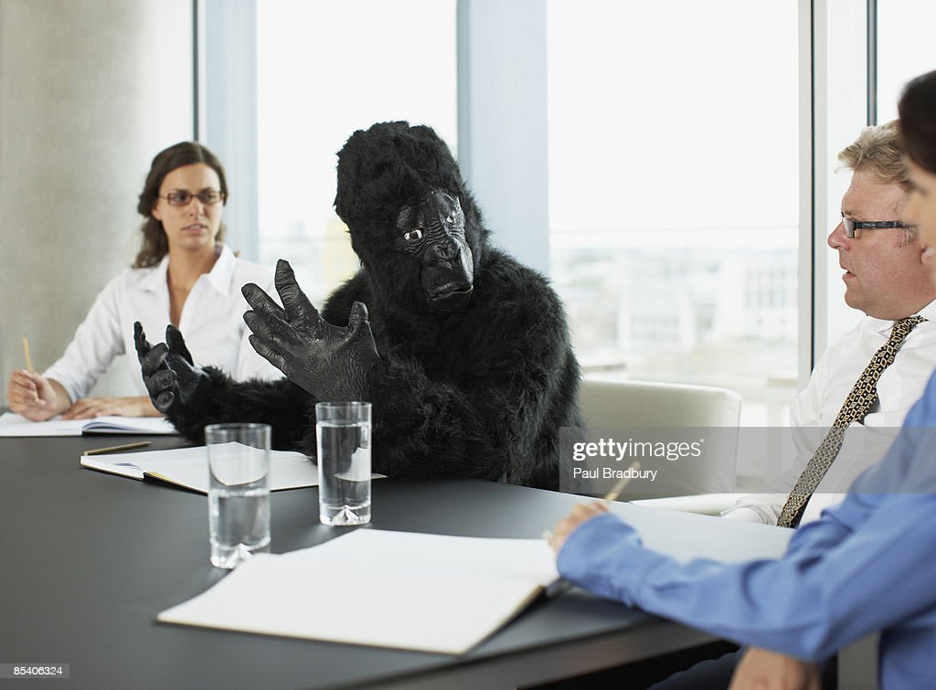 Gorilla and businesspeople having meeting in conference room : Stock Photo