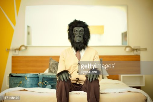 Gorilla Business Man in Hotel Room