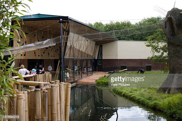 Gorilla Kingdom London Zoo London United Kingdom Architect Proctor Matthews Architects Gorilla Kingdom Moat With Pavilion And Look Out Area