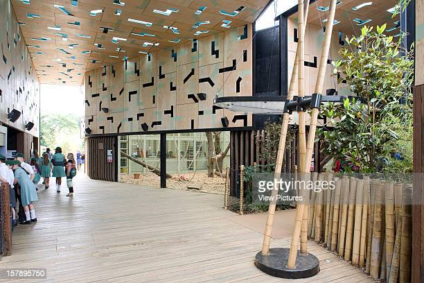 Gorilla Kingdom London Zoo London United Kingdom Architect Proctor Matthews Architects Gorilla Kingdom School Party In The Second Pavilion
