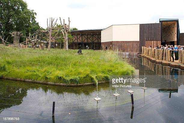 Gorilla Kingdom London Zoo London United Kingdom Architect Proctor Matthews Architects Gorilla Kingdom Moat With Pavilion Behind