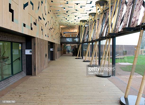 Gorilla Kingdom London Zoo London United Kingdom Architect Proctor Matthews Architects Gorilla Kingdom Main Pavilion Walkway