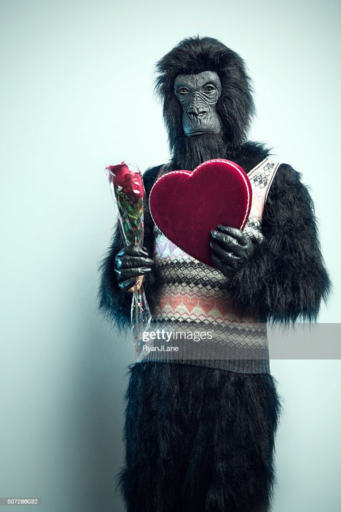 Gorilla Man With Valentines Day Gifts Stock Photo Getty