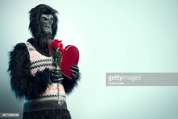 Gorilla Man with Valentines Day Gifts