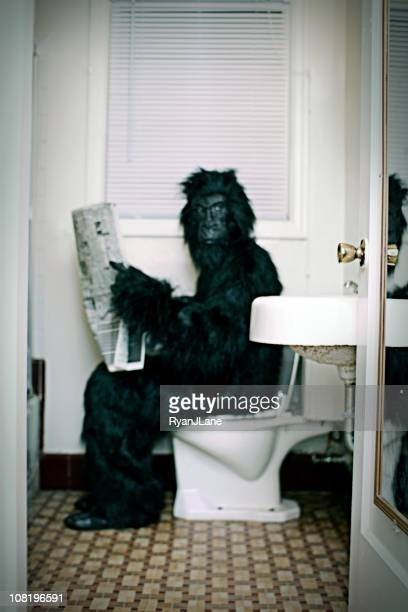 Gorilla Uses a Vintage Bathroom While Reading the Newspaper