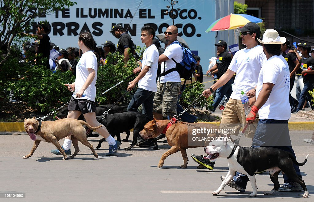 A gorup of people with their pets join thousands of Hondurans and delegates of the European Union based in the country, in the March for Peace in Tegucigalpa, on May 5, 2013. Honduras has the world's highest murder rate, at 92 deaths per 100,000 people, according to a recent statement by a UNESCO authority. AFP PHOTO / Orlando SIERRA