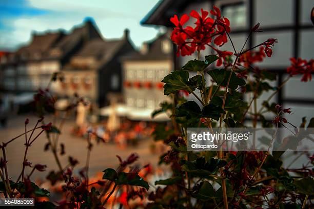 Goslar in Germany