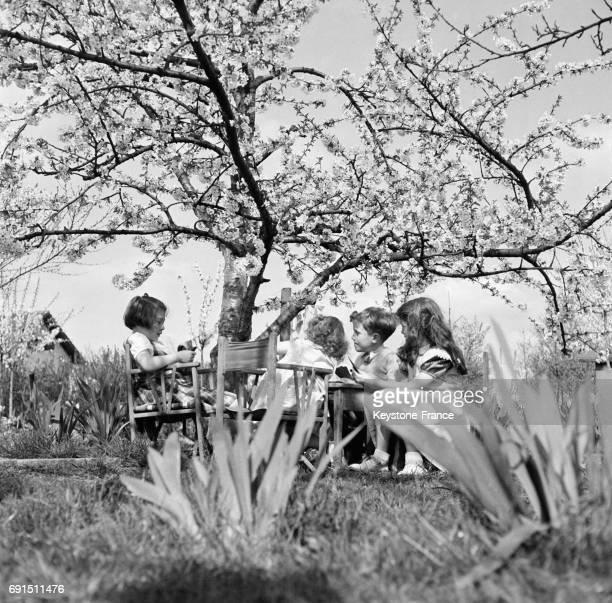 Goûter pour les enfants sous un cerisier en fleurs dans une ferme en France en 1952