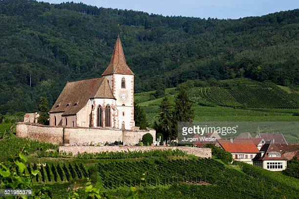 Gothic fortified church of Saint-Jacques in the vineyards, Hunawihr, Haut-Rhin, Alsace Wine Route, Alsace, France