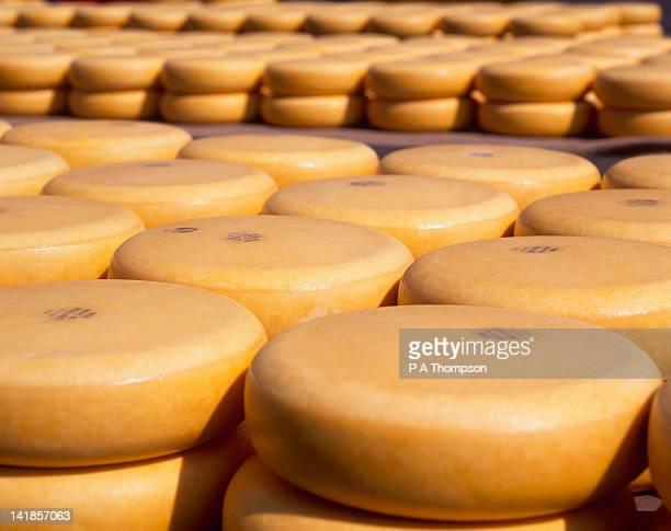 Gouda Cheese, Alkmaar, Netherlands