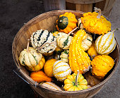 Colorful gourds in basket at farmer's market