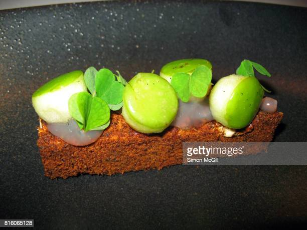 Gourmet dish featuring green apple and soursob leaves in a degustation menu