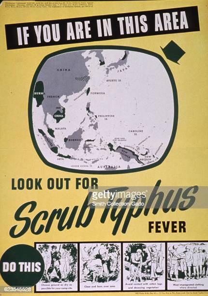 Government issued poster encouraging soldiers to look out for scrub typhus 1945 Courtesy National Library of Medicine
