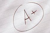 Grade on paper