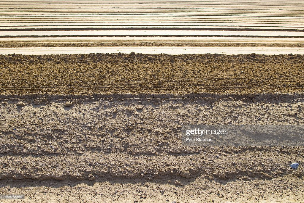 Graded agriculture field ready for planting