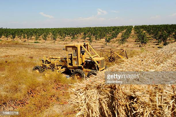 A grader is parked among hay and walnut trees on Kenny Watkins' farm in Linden California US on Wednesday Sept 14 2011 Watkins a fifthgeneration...