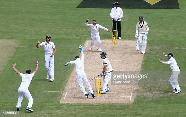 Graeme Swann of England and Matt Prior of England celebrate after taking the wicket of Chris Rogers of Australia during day one of the Second Ashes...