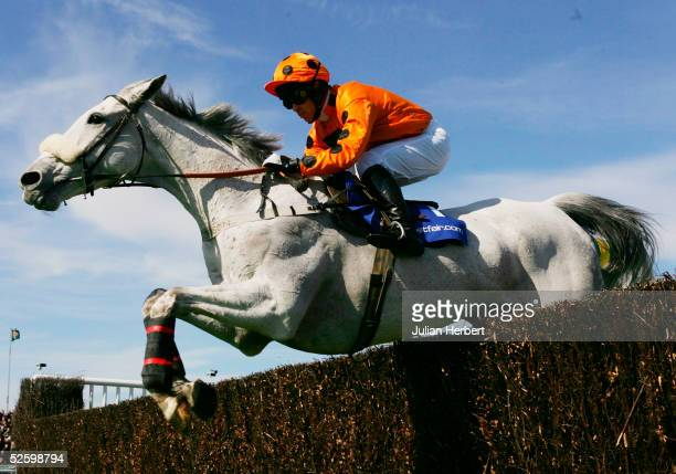 Graham Lee and Grey Abbey clear an early fence before going on to land The Betfair Bowl Steeple Chase Race run at Aitree Racecourse on April 7 2005...