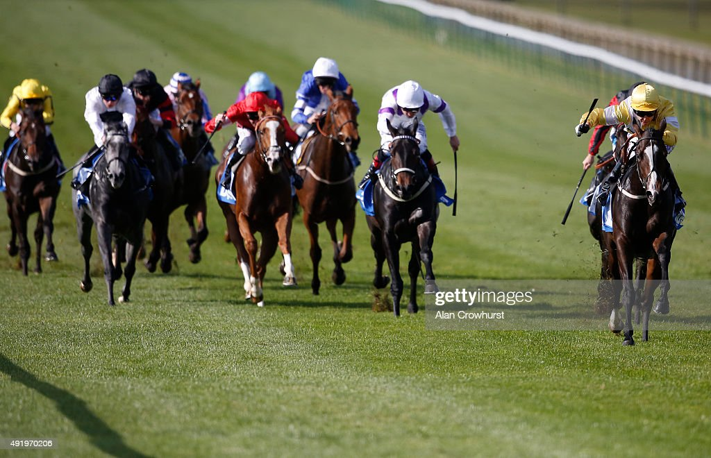 Graham Lee riding Quiet Reflection win The Dubai Cornwallis Stakes at Newmarket racecourse on October 09 2015 in Newmarket England