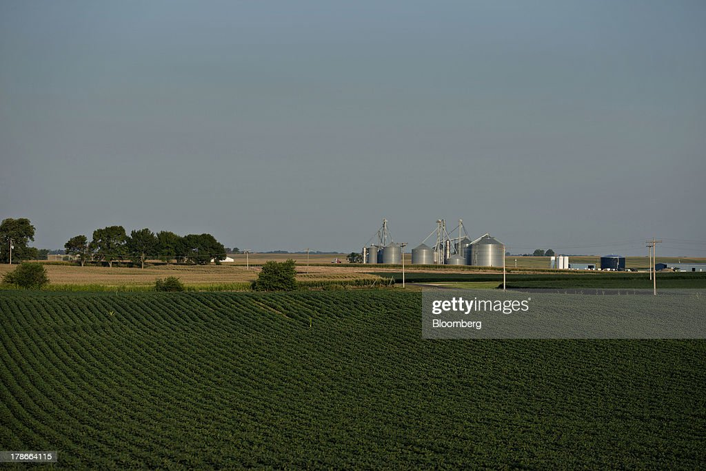 Grain bins and other buildings stand on a farm surrounded by soybean fields outside of Wyanet, Illinois, U.S., on Wednesday, Aug. 28, 2013. Wheat futures fell for a third straight day on signs of slack demand for inventories from the U.S., the worlds largest exporter, while soybeans dropped and corn gained. Photographer: Daniel Acker/Bloomberg via Getty Images