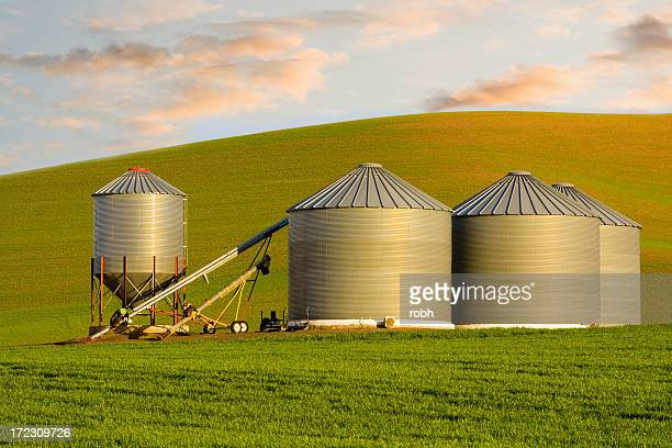 Grain Bins on the Farm