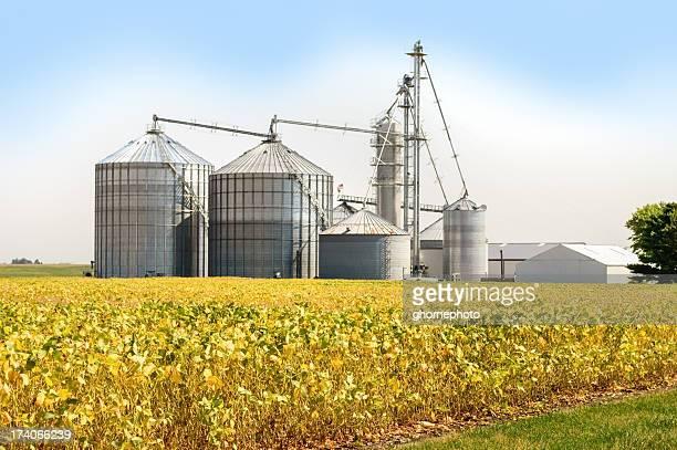 Getreideheber