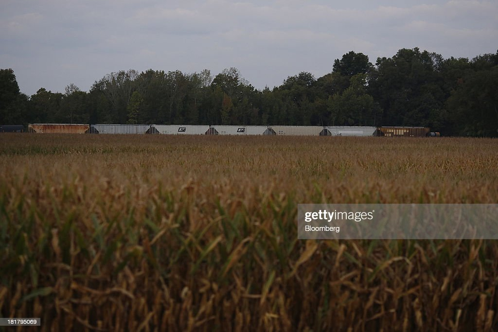 Grain railroad cars sit next to a cornfield in Jeffersonville, Indiana, U.S., on Tuesday, Sept. 24, 2013. Private exporters reported to the U.S. Department of Agriculture (USDA) export sales of 197,200 metric tons of corn for delivery to Mexico during the 2013 and 2014 marketing year. Photographer: Luke Sharrett/Bloomberg via Getty Images