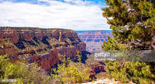 Grand Canyon Arizona View from the South Rim