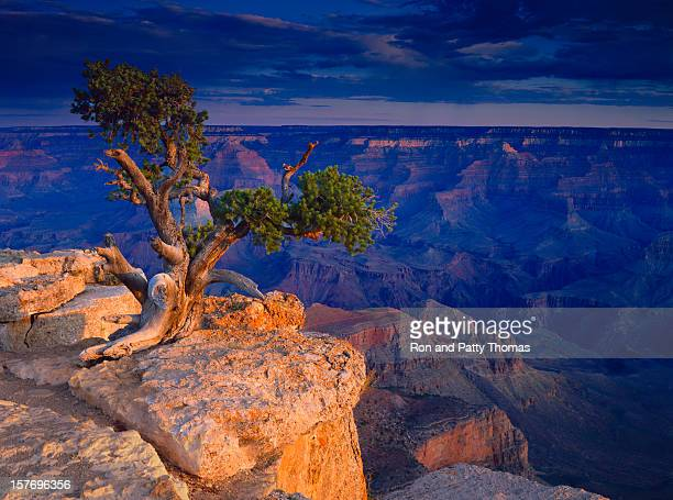 Parc National du Grand Canyon