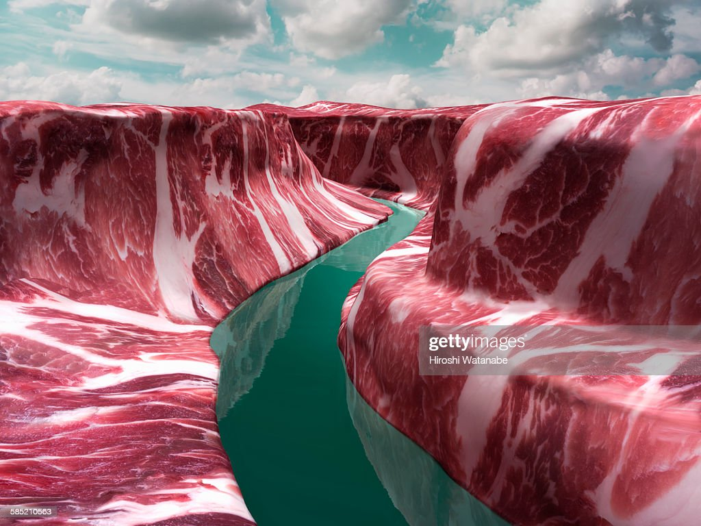 Grand Canyon that made of meat.