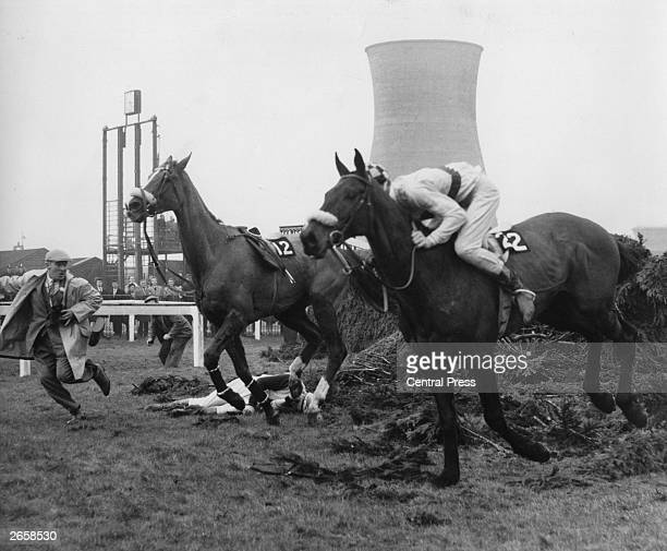 Grand National jockey Paddy Farrell lies under the Chair fence after falling from his mount 'Sea Knight' breaking his back
