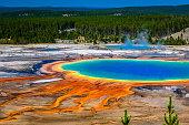 """Ein Ausschnitt der Grand Prismatic Spring aufgenommen vom """"Overlook"""" im Yellowstone Nationalpark zeigt die Quelle mit ihrer unwirklich bunten Palette an Farben."""