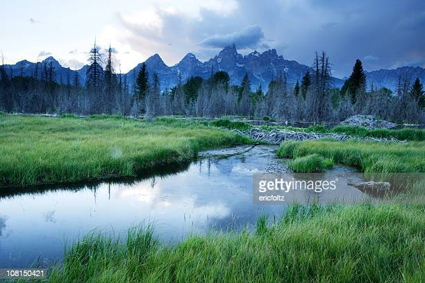 Grand Teton National Park with Stream and Mountains
