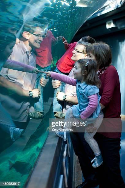 Grandchildren and grandparents looking at fish in aquarium