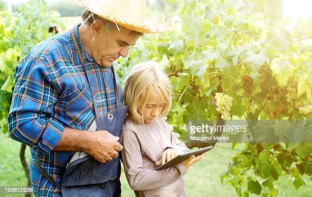 Grand-père et petits-enfants avec une tablette dans le vignoble