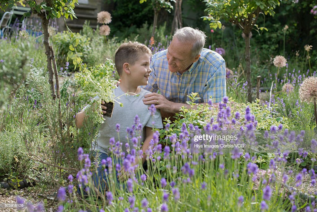 Grandfather and grandson (10-12 years) gardening in backyard