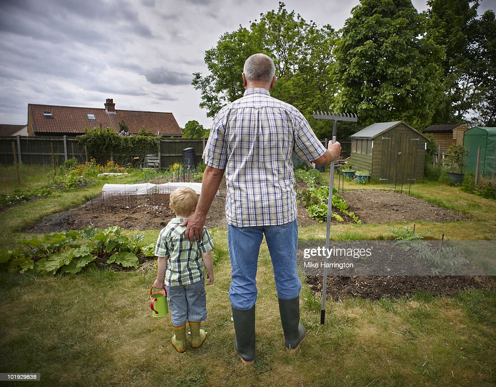 Grandfather and Grandson on allotment : Stock Photo