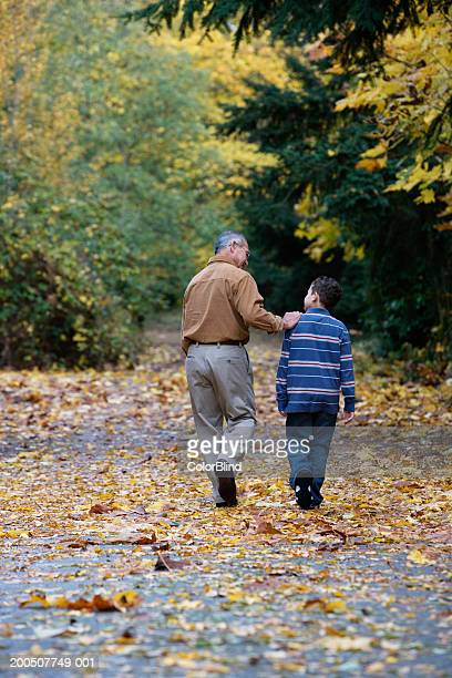 Grandfather and grandson (9-11) walking on path, rear view, autumn