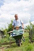 Grandfather pushing boy in wheel barrow in garden
