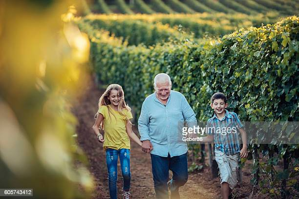 Grandfather showing his vineyard to his grandchildren