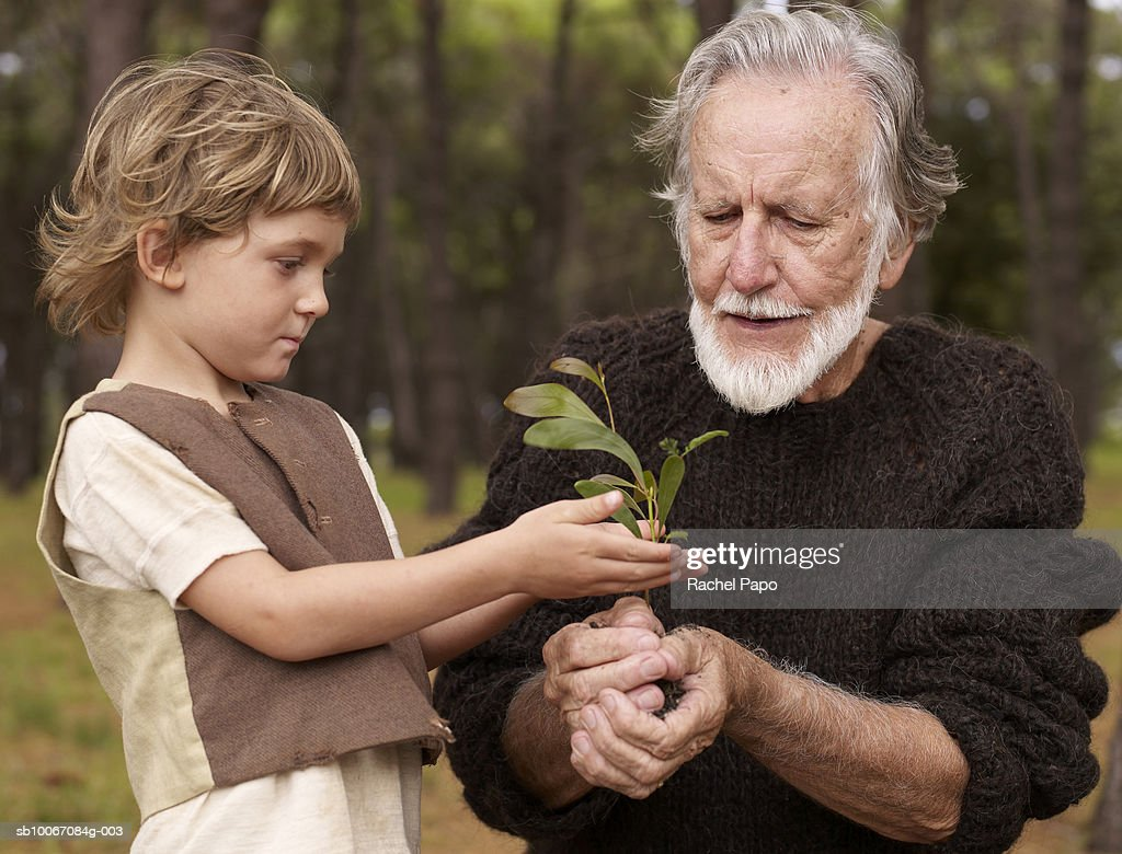 Grandfather with grandson (4-5) holding tree seedling