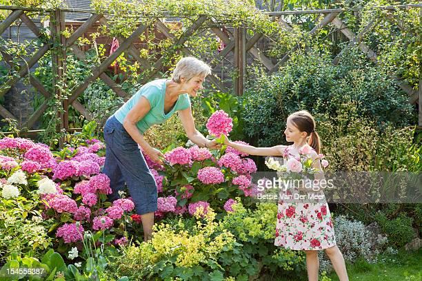 Grandma cuts, passes flowers over to grandchild.